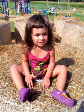 toddler, farm