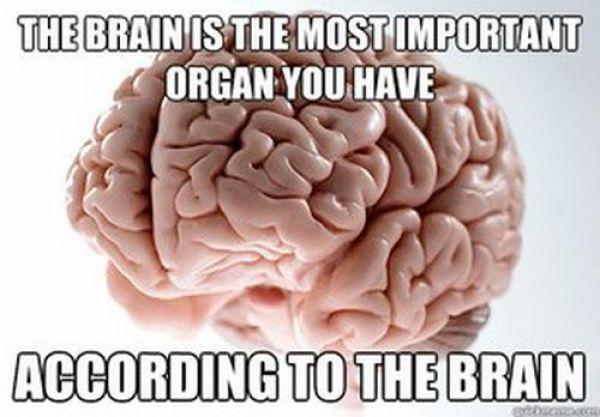 funny brain